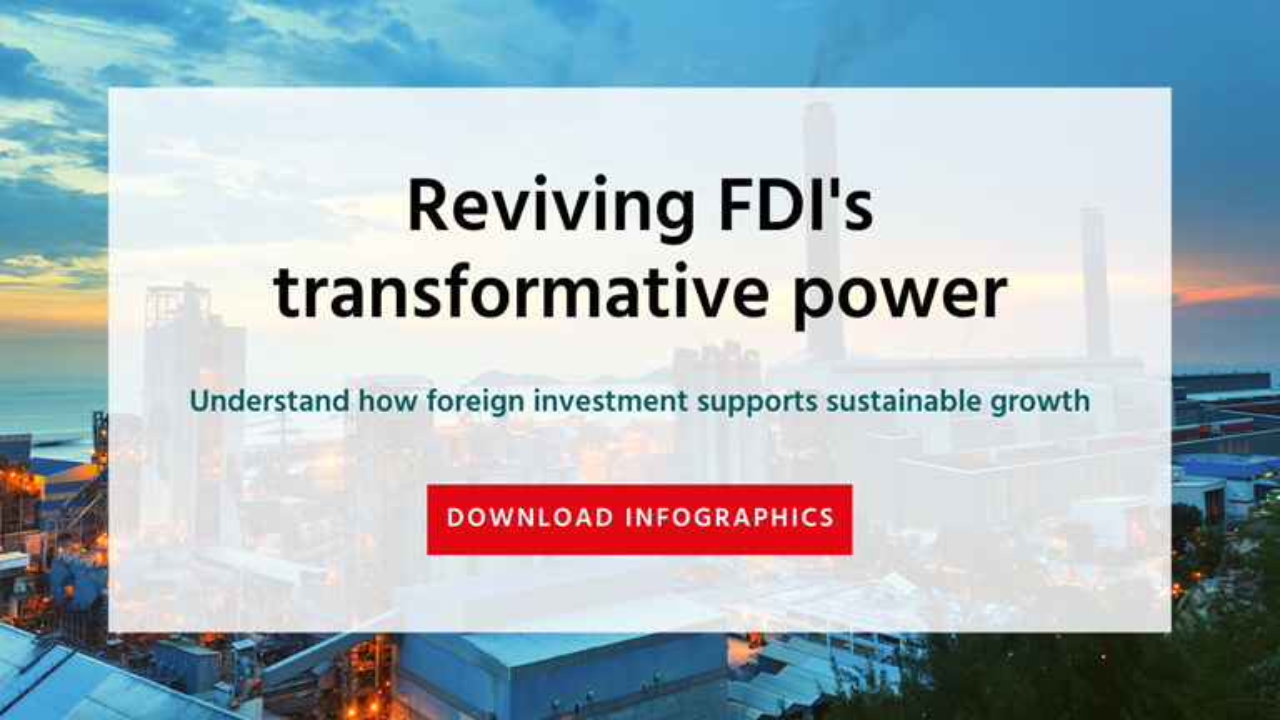 FDI Infographic HP Secondary Banner
